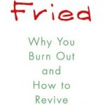 Fried: Why You Burn Out by Joan Borysenko, PhD