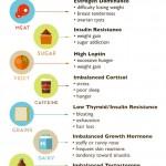 Detox, Retox, Detox: My #1 Recommendation to Upgrade Your Health