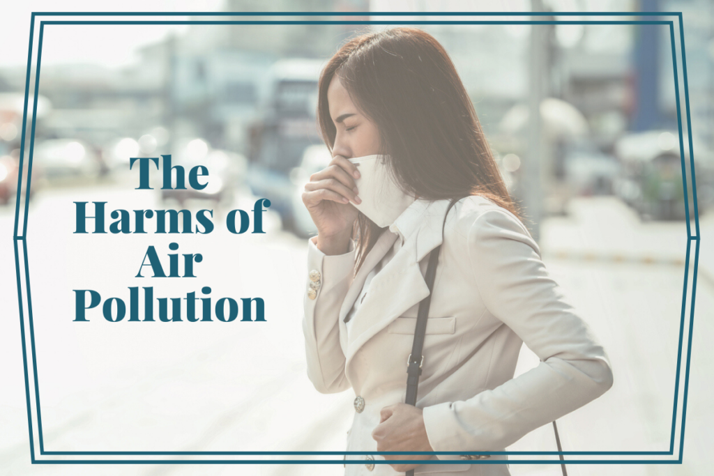 5 Simple Ways to Detox from the Ills of Air Pollution |Women's Health|Sara Gottfried MD