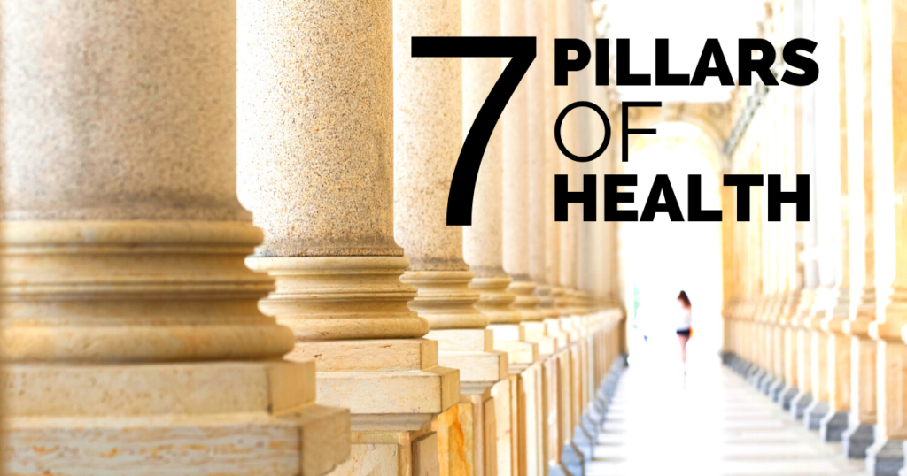 Sara Gottfried MD Women's Health Article |Health|Start 2020 Off Right with these 7 Pillars of Health
